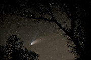 Comet Hale-bopp Photos - Close Encounter by Nick  Boren