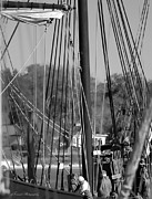 Tall Ships Prints - Close Up of Tall Ship  Print by Debra Forand