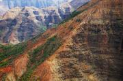 Featured Prints - Close up of Waimea Canyon Print by Kicka Witte