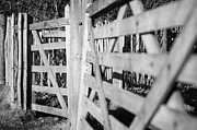 Rambling Framed Prints - Close Up Of Wooden Swivel Pedestrian Gate Entrance And Wooden Field Gate In Carnlough County Antrim Framed Print by Joe Fox