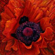 Red Poppies Paintings - Close up Poppy by Billie Colson