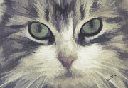 Canvas Cat Prints Prints - Closeup and Personal Print by Iain S Byrne