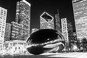 Illinois Framed Prints - Cloud Gate Chicago Bean Black and White Picture Framed Print by Paul Velgos