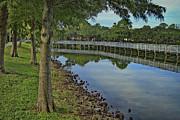Deborah Benoit - Cloud reflection At The Pond
