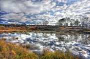Cloud Reflections In Beaver Pond Canaan Valley Print by Dan Friend