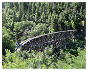 Wood Bridges Metal Prints - Cloudcroft Railroad Trestle Metal Print by Jack Pumphrey