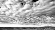 Clouds Over A North Dakota Field Print by Jeff  Swan