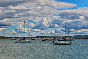 Sailboats In Water Posters - Clouds over the Masts Poster by Rachel Cohen