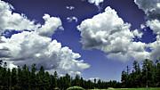 Bob Johnston - Clouds - Ponderosa Pines...