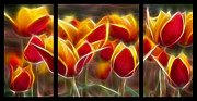Subtle Colors Digital Art Posters - Cluisiana Tulips Triptych  Poster by Peter Piatt