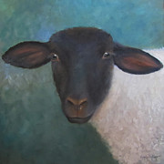 Cheri Wollenberg - Clyde - A Suffolk Lamb...