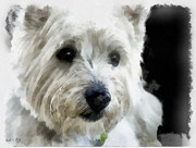Westie Digital Art - Clyde by Bob Galka