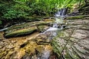 Adrian Evans - Clywedog Creek