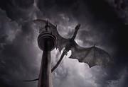 Cn Dragon Print by Tom Straub