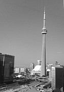 Bluejay Digital Art Posters - CN Tower Poster by Fiona Fieldhouse