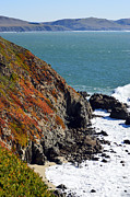 Coast Print by Brent Dolliver