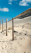 Land Scape Prints - Coastal Dunes in Holland 2 Print by Jenny Rainbow