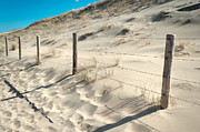 Land Scape Prints - Coastal Dunes in Holland 3 Print by Jenny Rainbow