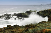 Rocky Coast Photos - Coastal Expressions by Donna Blackhall
