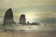 Storm Greeting Cards Framed Prints - Coastal Oregon Beauty Framed Print by Andrea Hazel Ihlefeld