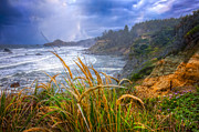 Seastack Photos - Coastal Oregon by Debra and Dave Vanderlaan