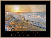 Frozen Beach Shore Prints - Coastal Paradise Print by Betsy A Cutler East Coast Barrier Islands