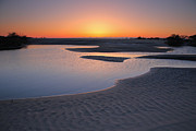 Pea Island Prints - Coastal Ponds At Sunrise II Print by Steven Ainsworth