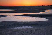 Canas Posters - Coastal Ponds At Sunrise Poster by Steven Ainsworth
