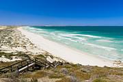 Tim Hester - Coastal Sand Dunes