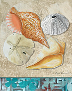 Megan Duncanson - Coastal Sea Shell...