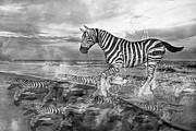 Coastal Stripes II Print by Betsy A  Cutler