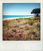 Lone Tree Framed Prints - Coastline Framed Print by Les Cunliffe