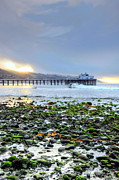 Pacific Photos - Cobblestone Sunrise at the Bu by Richard Omura