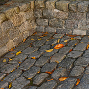 Cobblestones Print by Art Block Collections