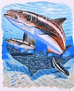 Striped Bass Paintings - Cobia on Rays by Carey Chen