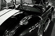 Monochrome Hot Rod Prints - Cobra Roadster Print by Howard Markel