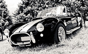 Autofocus Framed Prints - Cobra Sports Car Framed Print by Phil