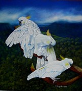 Sandra Sengstock-Miller - Cockatoo Lookout