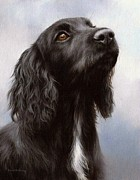 Rachel Stribbling - Cocker Spaniel Painting