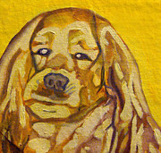 Mike Schelly - Cocker-Spaniel Portrait