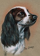 Great Pastels Prints - Cocker Spaniel Print by Val Stokes