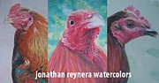 Gamefowl Paintings - Cocks by Jonathan Reynera