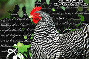 Chicken Mixed Media Posters - Coco French Country Chicken Print Poster by adSpice Studios