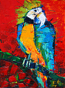 Emona Paintings - Coco The Talkative Parrot by EMONA Art