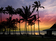 Coconut Palms Prints - Coconut Island Sunset - Hawaii Print by Daniel Hagerman