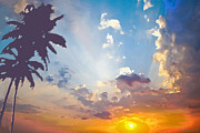 Coconut Trees In The Sunset Print by Dominique Amendola