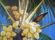 Jamaican Art Paintings - Coconuts by Kenneth Harris
