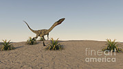 Running Digital Art - Coelophysis Running Across Desert by Kostyantyn Ivanyshen