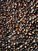 Philip Guiver - Coffee Beans