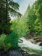 Cedars Paintings - Coffee Creek by Tova Main